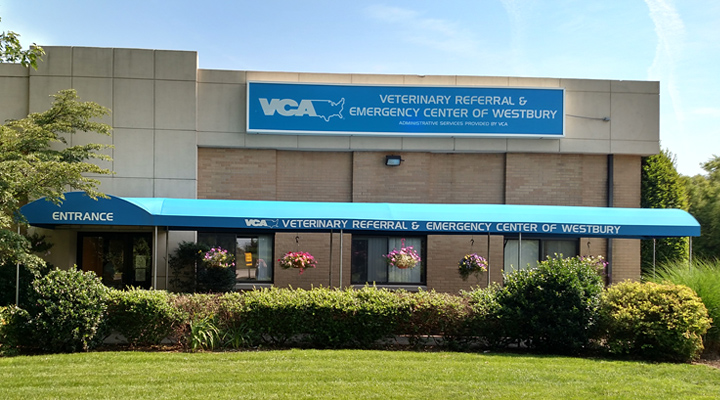 Hospital Homepage Picture of VCA Veterinary Referral & Emergency Center of Westbury