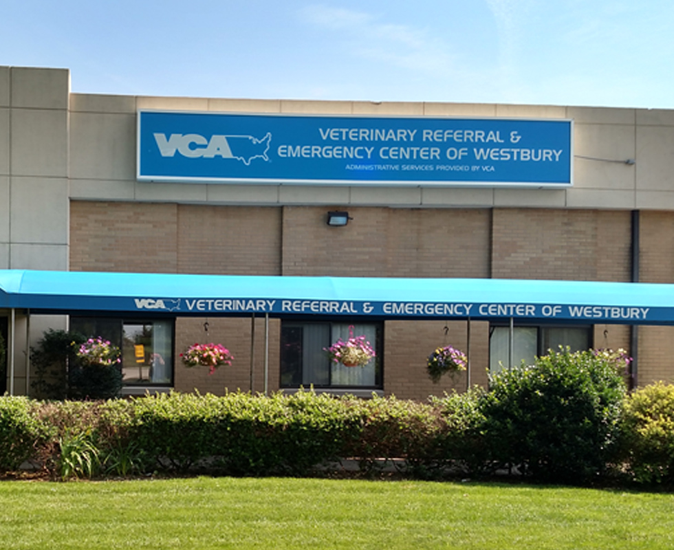 Hospital Picture of VCA Veterinary Referral & Emergency Center of Westbury