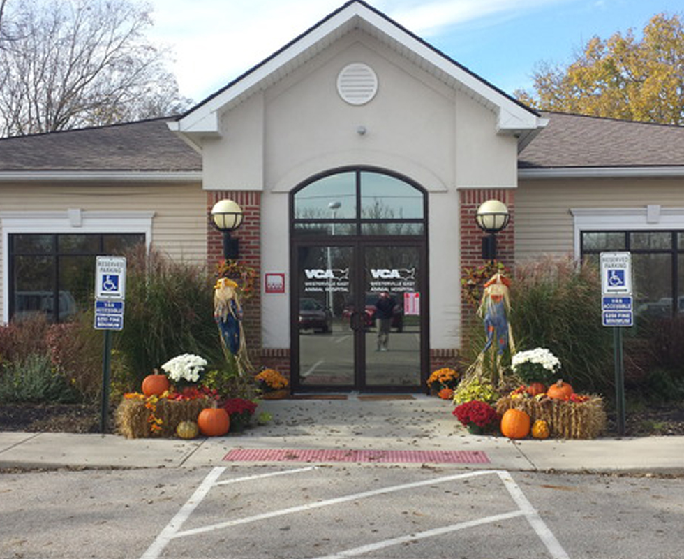 Hospital Picture of VCA Westerville East Animal Hospital