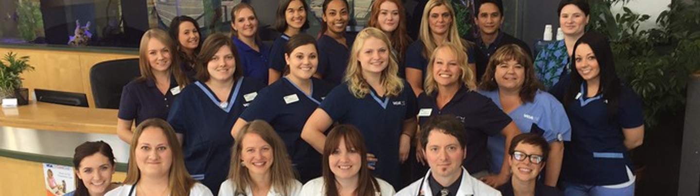 Team Picture of VCA Westmoreland Animal Hospital