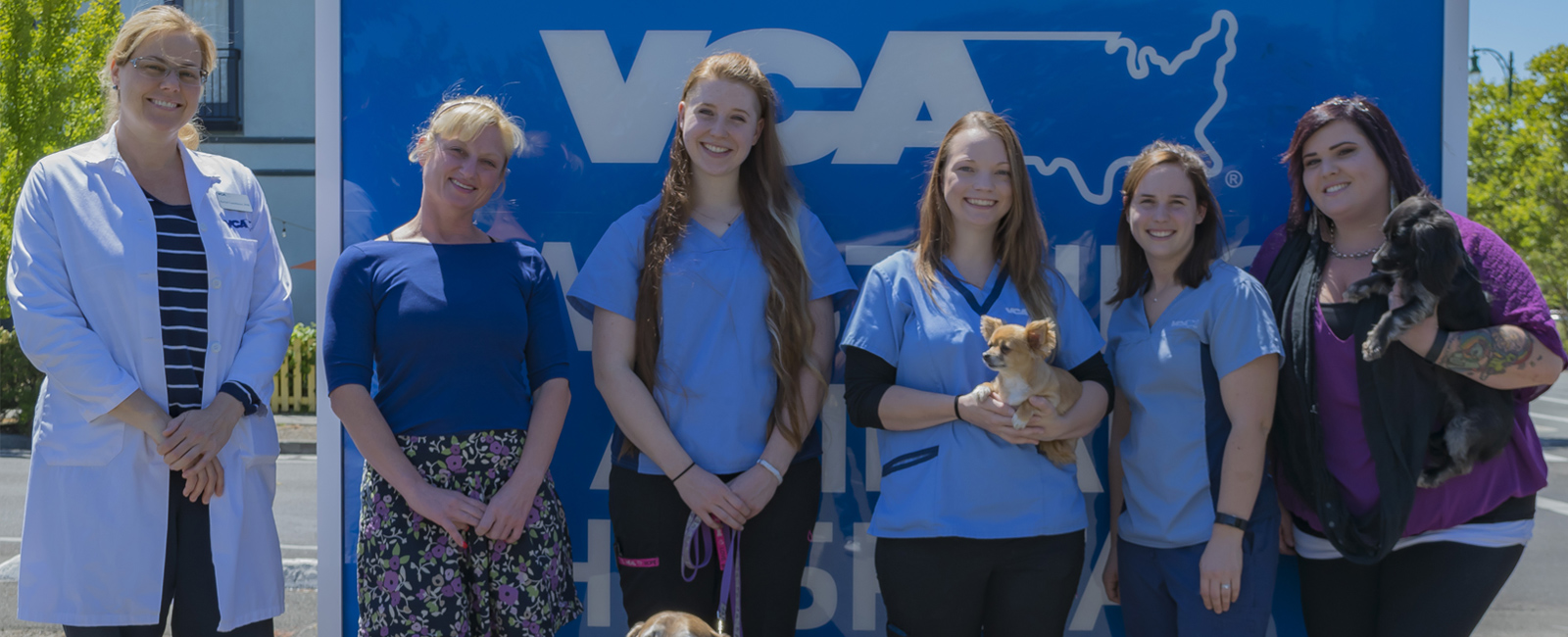 Team Picture of VCA Westside Animal Hospital