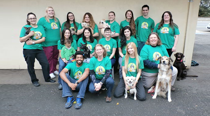 Homepage Team Picture of VCA Westside Animal Hospital