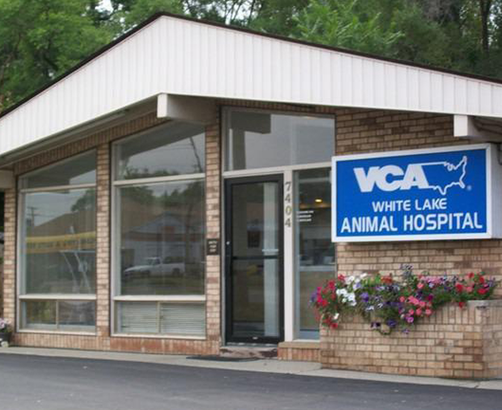 Hospital Picture of VCA White Lake Animal Hospital