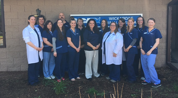 Homepage Team Picture of VCA Wickaboag Animal Hospital