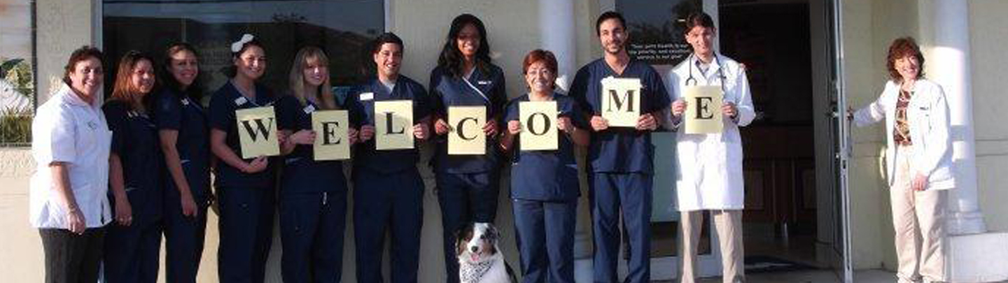 Team Picture of VCA Wiles Road Animal Hospital