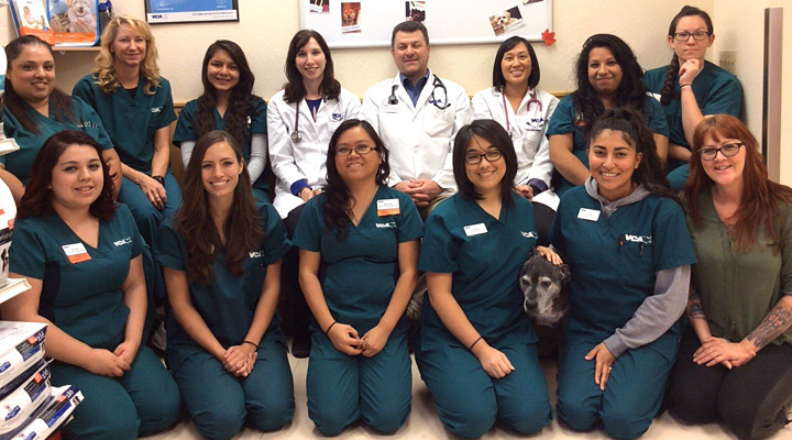 Homepage Team Picture of VCA Winchester Animal Hospital