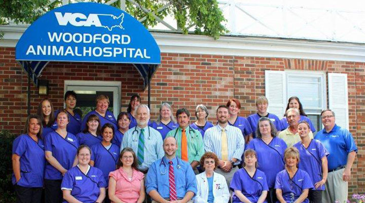 Team Picture of VCA Woodford Animal Hospital
