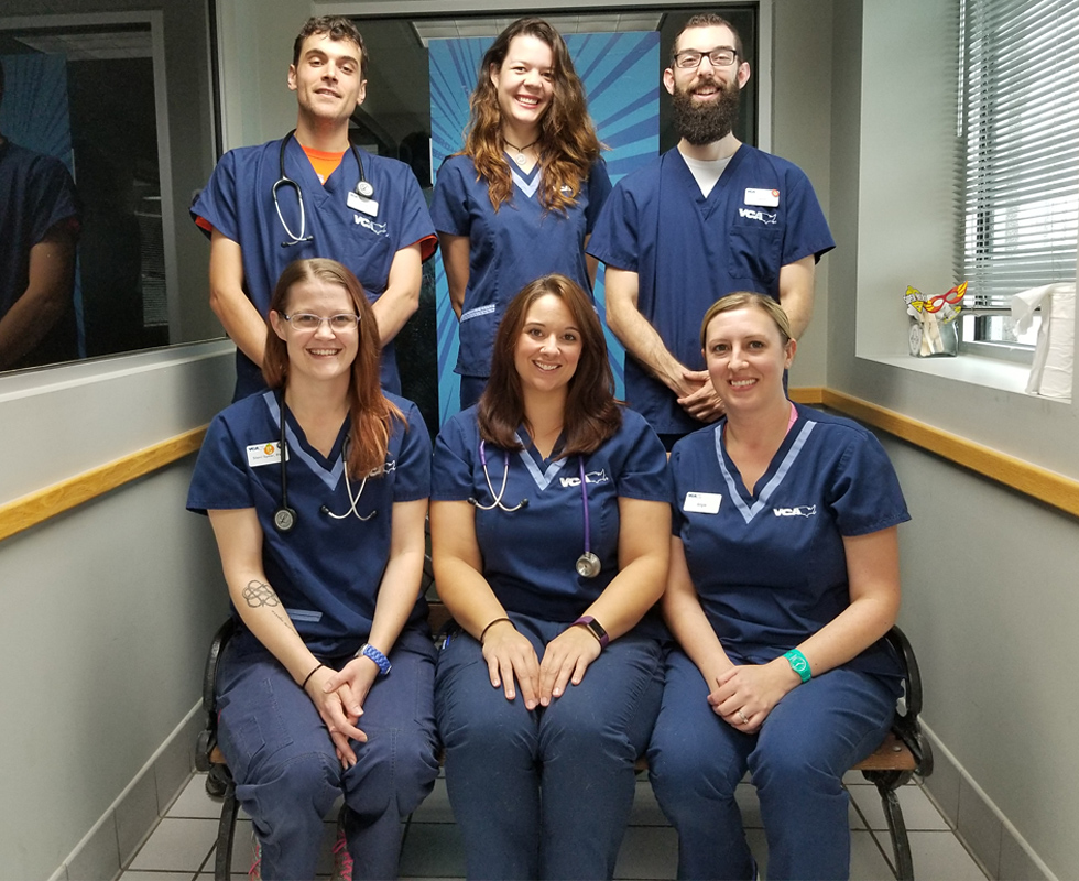 Technician Team Picture of VCA Woodland South Animal Hospital