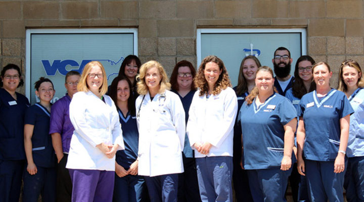 Team Picture of VCA Woodland South Animal Hospital