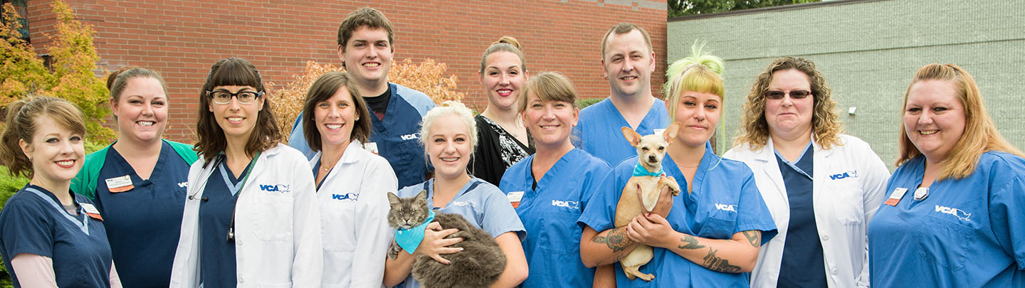 VCA Woodstock Animal Hospital - Our Team