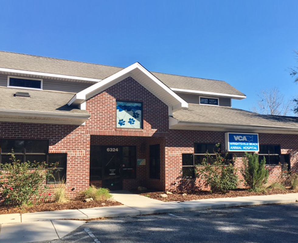 Hospital Picture of VCA Wrightsville Beach Animal Hospital