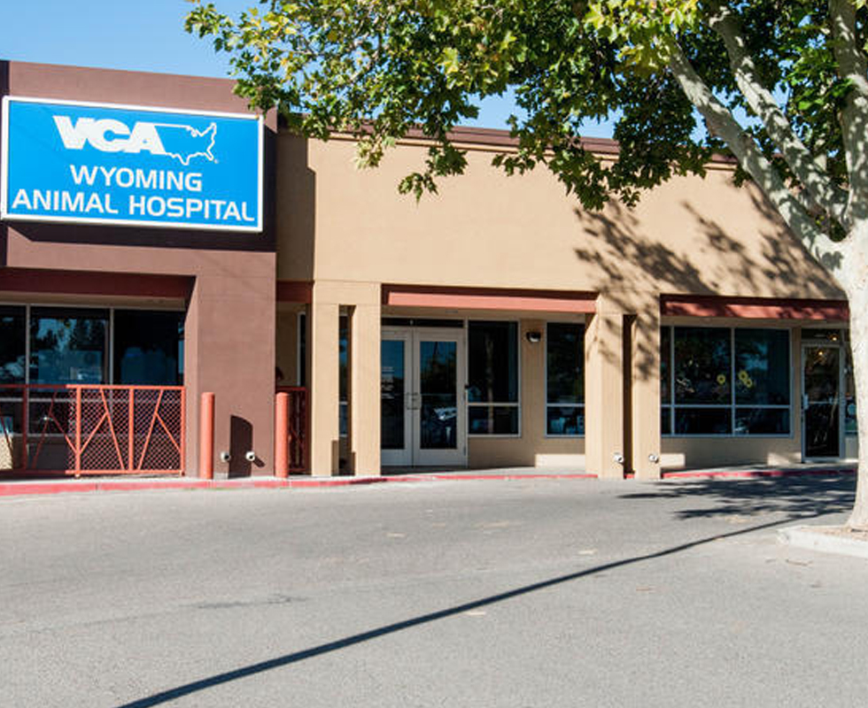 Hospital Picture of VCA Wyoming Animal Hospital