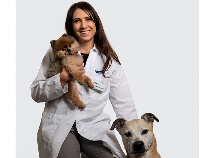Kacie Martin Vca Wyoming Animal Hospital
