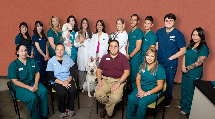 Veterinarians in Albuquerque, NM | VCA Wyoming Animal Hospital