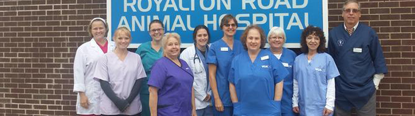 Team Picture of VCA York Royalton Animal Hospital