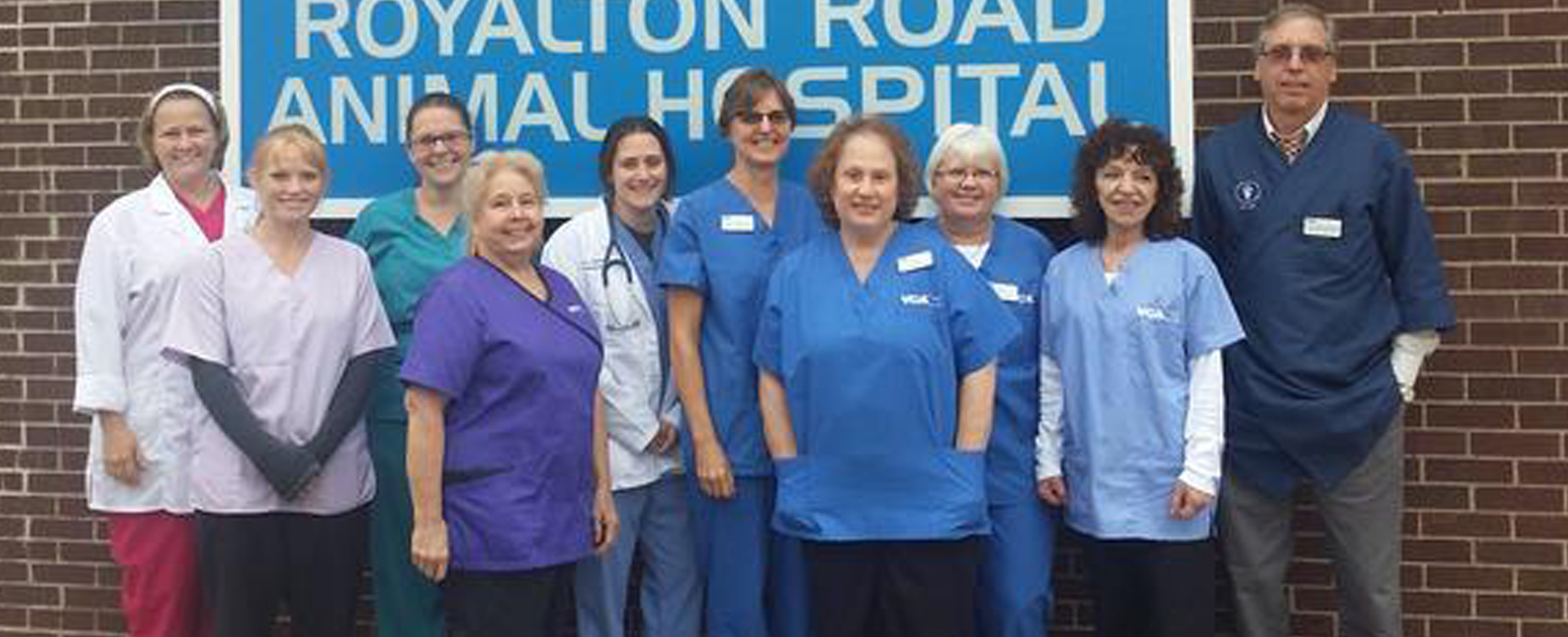 Homepage Team Picture of VCA York Royalton Animal Hospital