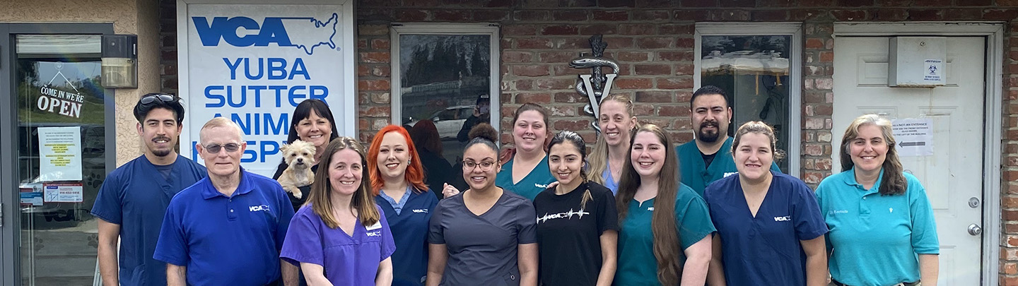 Team Picture of  VCA Yuba Sutter Animal Hospital