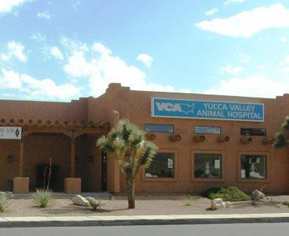 Hospital Picture of  VCA Yucca Valley Animal Hospital