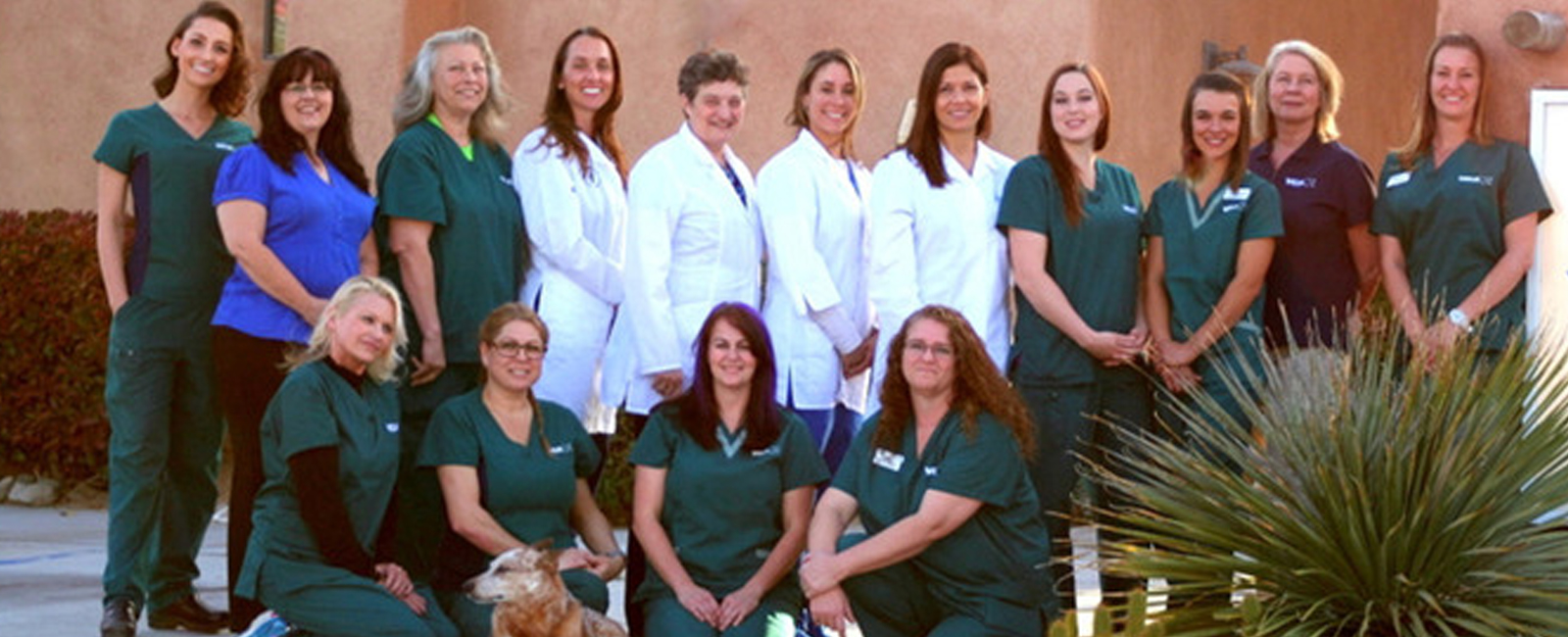 Homepage Team Picture of  VCA Yucca Valley Animal Hospital